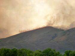 Retardant Suppressing Flames