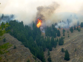 Fire above Hailey